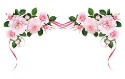Ρόδινος αυξήθηκε λουλούδια και το μετάξι κυμάτισε τις κορδέλλες σε μια floral ρύθμιση ελεύθερη απεικόνιση δικαιώματος
