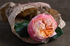 - Ρόδινος αυξήθηκε λουλούδι που τυλίχτηκε στην εφημερίδα Στοκ Φωτογραφία