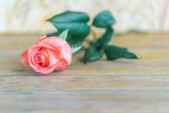 Ρόδινος αυξήθηκε λουλούδι την ημέρα του ξύλινου βαλεντίνου πατωμάτων Στοκ Εικόνες