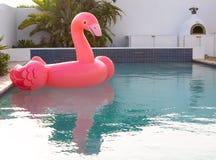 Ρόδινος διογκώσιμος σωλήνας μορφής πουλιών φλαμίγκο που επιπλέει σε μια πισίνα στοκ εικόνες