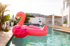 Ρόδινος διογκώσιμος σωλήνας μορφής πουλιών φλαμίγκο που επιπλέει σε μια πισίνα στο κατώφλι στοκ φωτογραφία με δικαίωμα ελεύθερης χρήσης