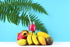 Ρόδινος καταφερτζής με τα τροπικά φρούτα Στοκ φωτογραφία με δικαίωμα ελεύθερης χρήσης