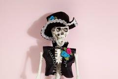 Ρόδινος μεξικάνικος σκελετός Στοκ φωτογραφία με δικαίωμα ελεύθερης χρήσης