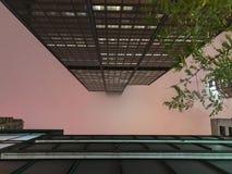 Ρόδινος μουντός ουρανός στο λυκόφως στην πόλη στοκ εικόνες με δικαίωμα ελεύθερης χρήσης