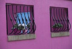 Ρόδινος τοίχος με τα δοχεία και gwindow τις σχάρες λουλουδιών σε Burano Βενετία Ιταλία στοκ εικόνα με δικαίωμα ελεύθερης χρήσης