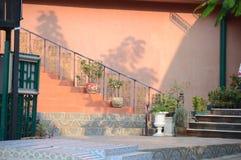 Ρόδινος τοίχος με τα λουλούδια στοκ φωτογραφίες με δικαίωμα ελεύθερης χρήσης