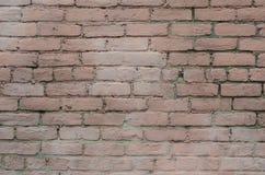Ρόδινος τουβλότοιχος, που χρωματίζεται και που φοριέται στοκ φωτογραφίες
