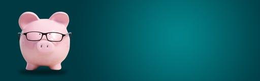 Ρόδινος χοίρος με τα γυαλιά στοκ εικόνα με δικαίωμα ελεύθερης χρήσης