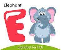 Ρόδινο γράμμα Ε και γκρίζος ελέφαντας απεικόνιση αποθεμάτων