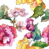 Ρόδινο και κίτρινο λουλούδι gardania Floral βοτανικό λουλούδι Άνευ ραφής πρότυπο ανασκόπησης Στοκ Εικόνες