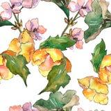Ρόδινο και κίτρινο λουλούδι gardania Floral βοτανικό λουλούδι Άνευ ραφής πρότυπο ανασκόπησης Στοκ Φωτογραφίες