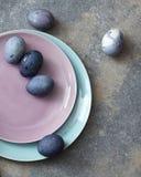 Ρόδινο και μπλε πιάτο με τα αυγά Πάσχας Στοκ Εικόνα