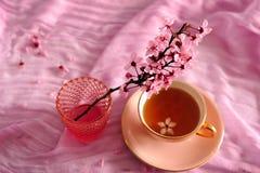 Ρόδινο κεράσι Blossomms και τσάι στο ρόδινο φλυτζάνι στοκ εικόνα