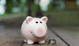 Ρόδινο κιβώτιο χρημάτων για τα νομίσματα για την οικονομία στοκ εικόνες με δικαίωμα ελεύθερης χρήσης