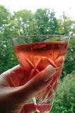 ρόδινο κρασί Στοκ φωτογραφία με δικαίωμα ελεύθερης χρήσης