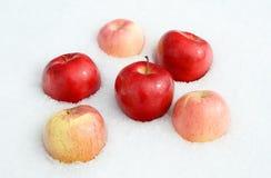 ρόδινο κόκκινο μήλων Στοκ Φωτογραφίες