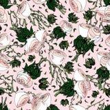Ρόδινο λευκό και τριαντάφυλλα διανυσματική απεικόνιση