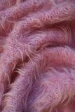 ρόδινο μαλλί ανασκόπησης Στοκ Εικόνες
