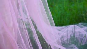 Ρόδινο φόρεμα στη χλόη απόθεμα βίντεο