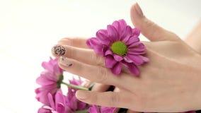 Ρόδινο χρυσάνθεμο καλά-καλλωπισμένα στα θηλυκό χέρια φιλμ μικρού μήκους