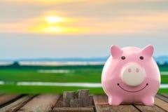 Ρόδινο χρώμα τραπεζών Piggy στοκ εικόνες