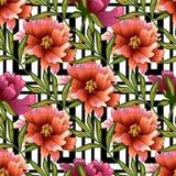 Ρόδινο peony λουλούδι σε ένα διανυσματικό ύφος Στοκ Εικόνα