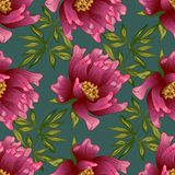 Ρόδινο peony λουλούδι σε ένα διανυσματικό ύφος Στοκ Εικόνες