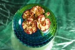 ρόδινο vase λουλουδιών Στοκ φωτογραφίες με δικαίωμα ελεύθερης χρήσης
