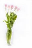 ρόδινο vase τουλιπών δεσμών Στοκ εικόνες με δικαίωμα ελεύθερης χρήσης