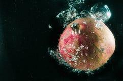 Ρόδι Φρούτα τις πτώσεις που απομονώνονται με στο Μαύρο Στοκ Φωτογραφία