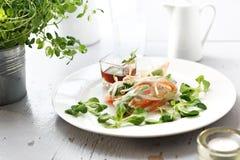 Ρόλοι άνοιξη Ένα υγιές και ελαφρύ χορτοφάγο πρόχειρο φαγητό στοκ φωτογραφίες