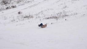 Ρόλοι κοριτσιών από το υψηλό χιονώδες βουνό στο πιατάκι χιονιού Χριστούγεννα Παιχνίδια με το χιόνι την παγωμένη ημέρα φιλμ μικρού μήκους