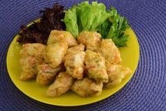 Ρόλοι λάχανων που γεμίζονται με το κρέας, το ρύζι και τα λαχανικά κοτόπουλου Μολδαβικά τρόφιμα Στοκ Εικόνες