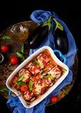 Ρόλοι μελιτζανών μελιτζάνας με το κρέας στη σάλτσα ντοματών Στοκ εικόνα με δικαίωμα ελεύθερης χρήσης