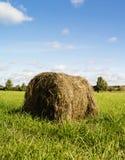 Ρόλος του ξηρού αχύρου στον τομέα Στοκ φωτογραφία με δικαίωμα ελεύθερης χρήσης