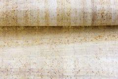 Ρόλος του παπύρου Στοκ εικόνα με δικαίωμα ελεύθερης χρήσης