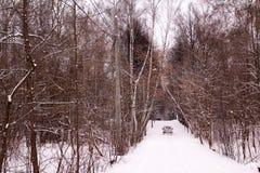 δρόμος αυτοκινήτων χιονώ&delt στοκ εικόνες