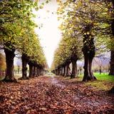 δρόμος κάστρων Στοκ Φωτογραφία