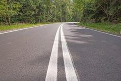 Δρόμος με πολλ'ες στροφές στο δάσος Στοκ Εικόνα