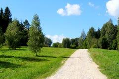 δρόμος πάρκων φθινοπώρου κίτρινος Στοκ Εικόνες