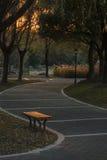 δρόμος πάρκων φθινοπώρου κίτρινος Στοκ φωτογραφία με δικαίωμα ελεύθερης χρήσης