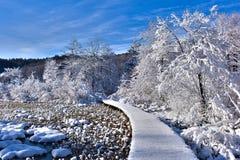 δρόμος στη χειμερινή χώρα τ&om Στοκ φωτογραφία με δικαίωμα ελεύθερης χρήσης