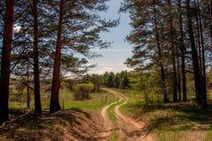 δρόμος τοπίων Στοκ Εικόνες