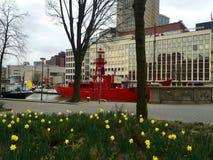 Ρότερνταμ Στοκ εικόνες με δικαίωμα ελεύθερης χρήσης