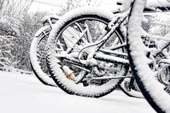 Ρόδα ποδηλάτων το χειμώνα Στοκ Εικόνες