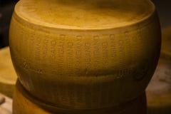 Ρόδα του τυριού παρμεζάνας Στοκ Εικόνες