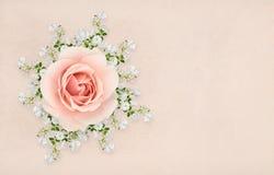 Ρόδινα και άσπρα τριαντάφυλλα που τακτοποιούνται Στοκ εικόνα με δικαίωμα ελεύθερης χρήσης