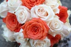 Ρόδινα και άσπρα τριαντάφυλλα Στοκ φωτογραφία με δικαίωμα ελεύθερης χρήσης