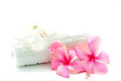 Ρόδινα και άσπρα Hibiscus Στοκ Εικόνες