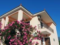 Ρόδινα λουλούδια και ένα ρόδινο σπίτι Στοκ φωτογραφία με δικαίωμα ελεύθερης χρήσης